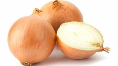 onion workoutic